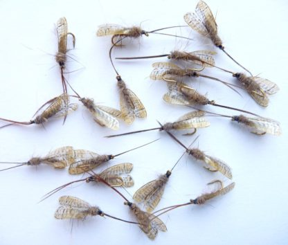 sedge ailes synthetique