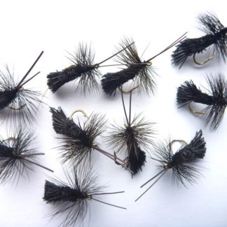 sedge goddard black